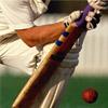 Quick cricket Game - Cricket Games